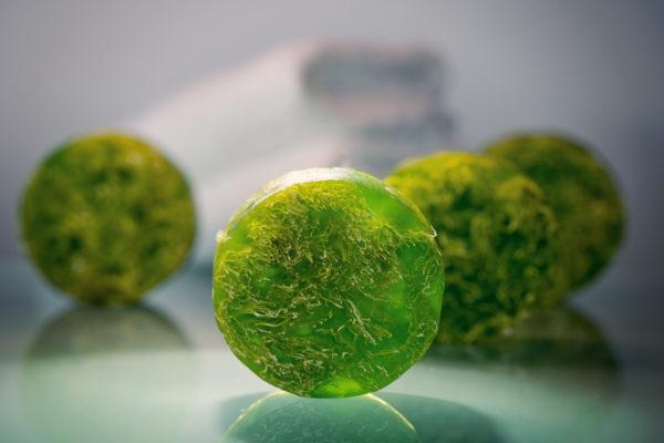 Green Tea Loofah Soap